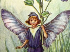 11th March 2019. Cicely Mary Barker Fairies
